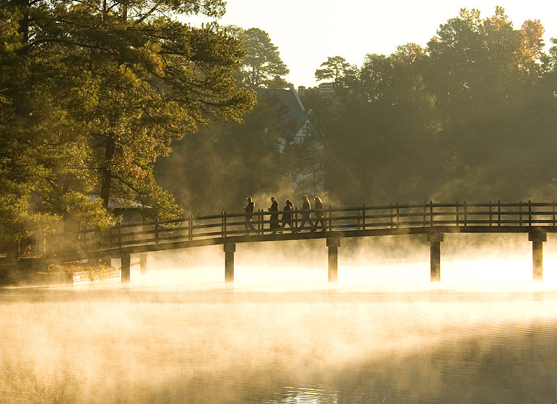 Lake-mist